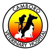 Camboro Veterinary Hospital