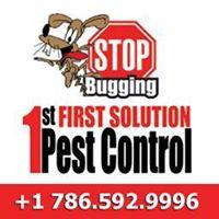 1st Solution Pest control