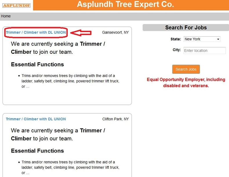 apply Asplundh online step 2