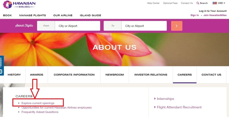 apply Hawaiian Airlines online step 1