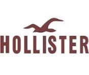 Hollister Application Online