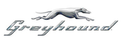 Greyhound Application Online